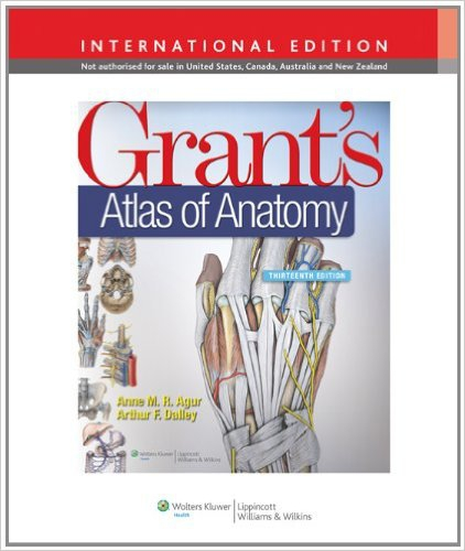 moore clinically oriented anatomy pdf 7th edition