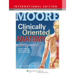 Moore Clinically Oriented Anatomy 7th International Edition