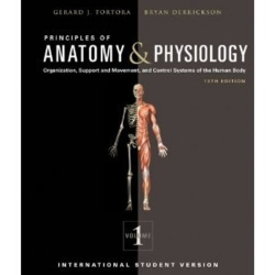 Principles Of Anatomy And Physiology 13Ed 2 Vol. Set